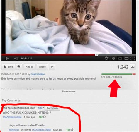 The 25 Funniest YouTube Comments Of The Year   BuzzFeed News
