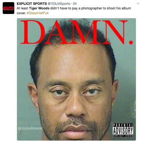 Tiger Woods Memes, DUI   Top 10 Funniest