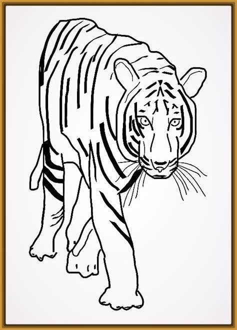 Tigres para Dibujar a Lapiz Faciles Para Imprimir | Fotos ...