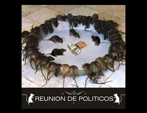Tipica Reunion De Politicos Imagenes Para Facebook ...
