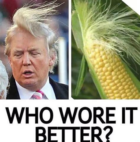 Top 10 Funniest Donald Trump Memes and Tweets