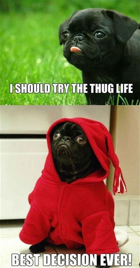 Top 30 Thug Life Memes   Thug Life Meme