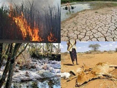Trump y el calentamiento global