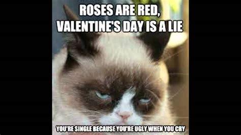 ultimate grumpy cat memes   YouTube