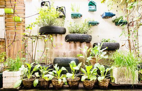 Urban Gardening for Birds | Celebrate Urban Birds