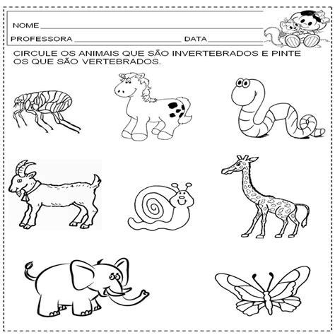 Vertebrados E Invertebrados Para Colorear Imagui ...