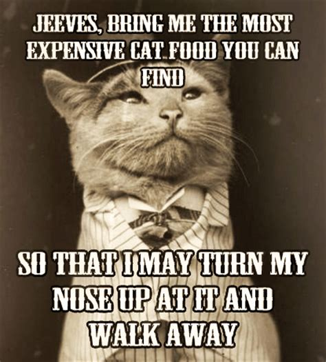Vintage Pet Memes Are Turn of the Century Hilarious
