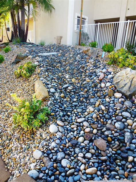 Water Wars: xeriscaping in Southern California and ...