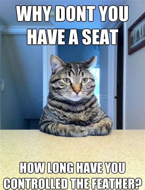 WEIRD CAT MEMES image memes at relatably.com