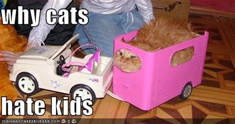Why cats hate kids image   Cat lovers   Mod DB