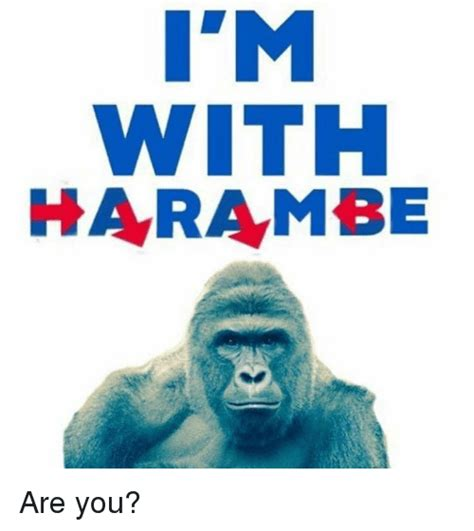 WITH HARAMBE Are You? | Dank Meme on SIZZLE