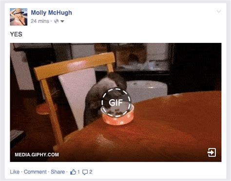 You Can Finally, Actually, Really, Truly Post GIFs on ...