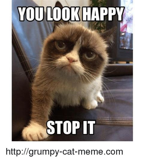 YOU LOOK HAPPY STOP IT Httpgrumpy Cat Memecom | Meme on me.me
